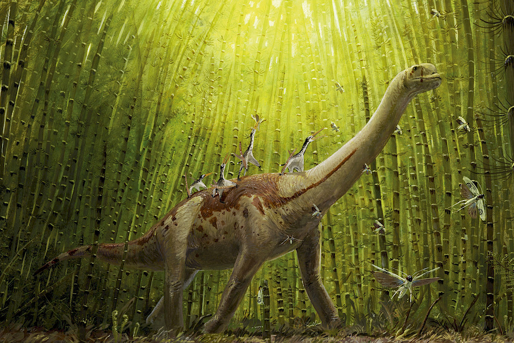 Europasaurus accompanied by some pterosaurs